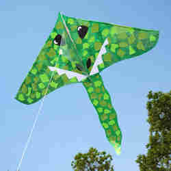 kids dragon kite