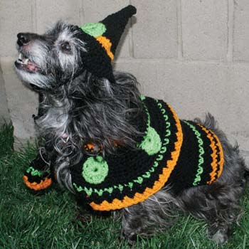Dog Witch Costume Crochet Pattern