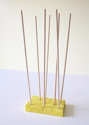 Dowels in Sponge