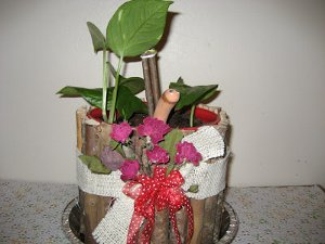 Coffee Jug Planter