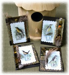 Golden Songbirds Artist Trading Cards