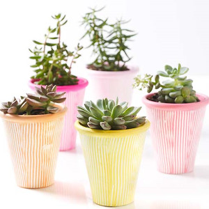 Wonderfully Springlike Terra Cotta Pots