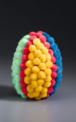 Colorful Pom Pom Egg