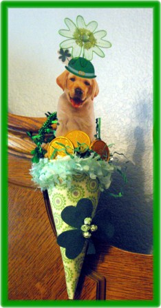 St. Patrick's Day Cone 1