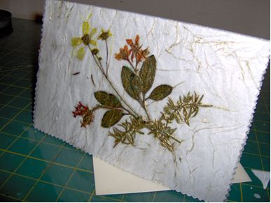 Pressed Flower Card