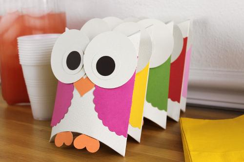 Owl Party Decor