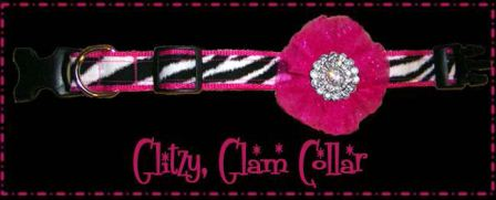 Glitzy Dog Collar